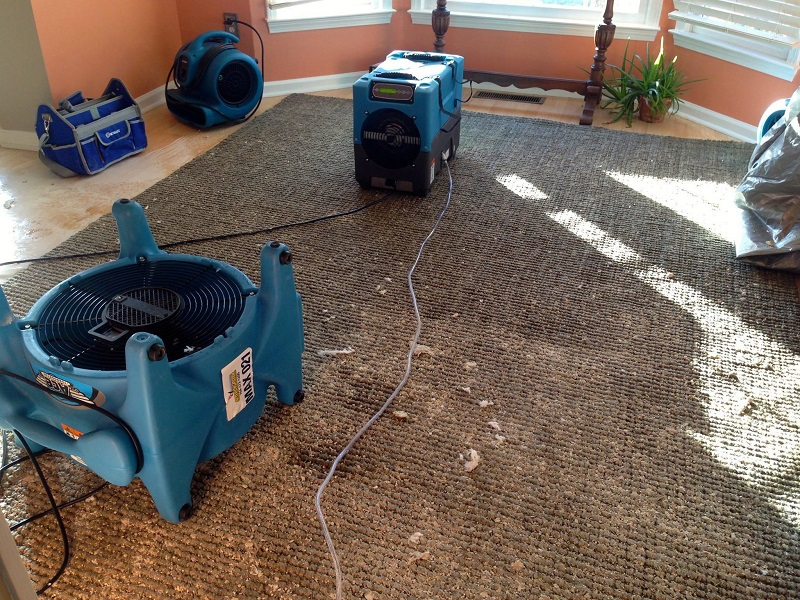 Temecula Carpet Cleaning Images Kitchen Gadgets Store Sha