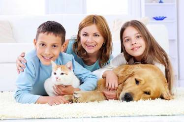 Family and Pets on Clean Carpet