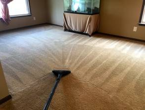 Carpet+Cleaning